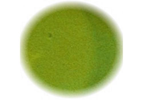 Polvere Acrilica Salvia Immaginails